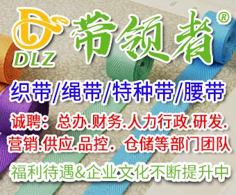 广州市带领者辅料贸易有限责任公司